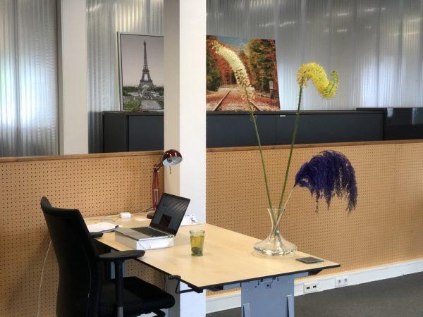 hereplein4-werkruimte-plant